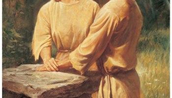 Domestic discipline movement christian The 'Christian